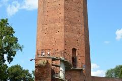 Kruszwica Średniowieczny zamek  królewskiDSC_0532
